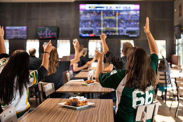 Sports fans cheering the game